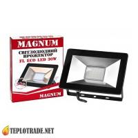 Прожектор MAGNUM FL ECO, 100W, 6500K, IP65